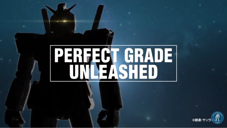 perfect-grade-unleashed (1)